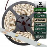 4500K Ledstrip Daglicht 12V 6W/m 5meter