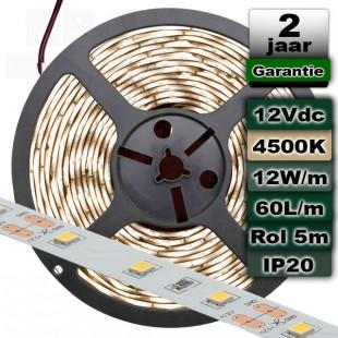 4500K Ledstrip Daglicht 12V 12W/m 5meter