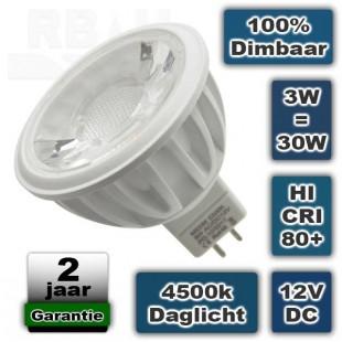 Led lichtbron 3W 12V 4500K Daglicht